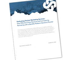 White Paper: Partner Marketing Program