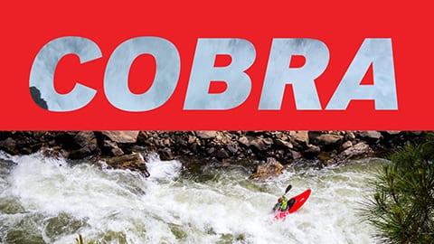DataPath COBRA